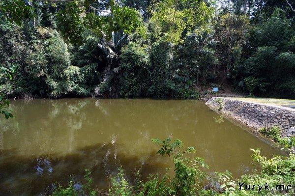 Пруд на водопаде Ton Sai